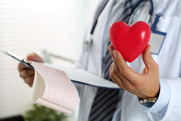 Fisiologia cardiovascular: entenda mais sobre sua importância?